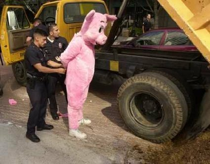 pig getting arrested